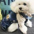 画像5: 【DOG WEAR】柔らかデニムスタイル<送料無料> (5)